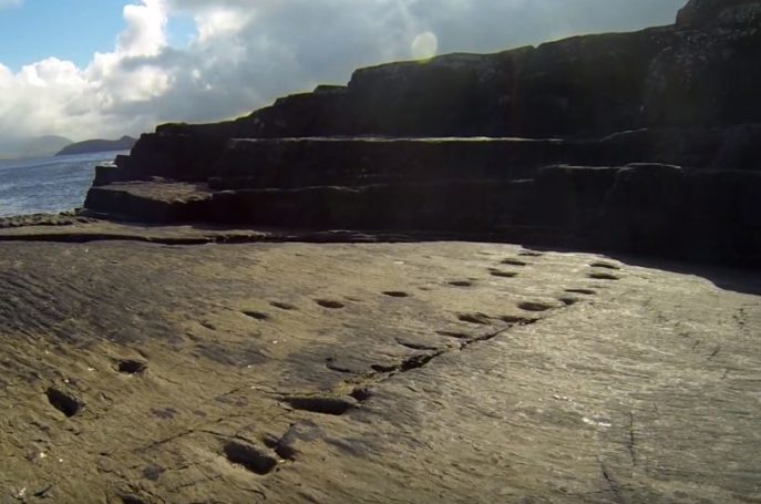 385-million-year-old footprints in Co Kerry represent turning point in evolution